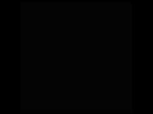 diseño código QR chihuahua